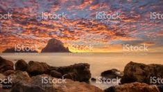es vedra - Google Search Vineyard, Google Search, Outdoor, Outdoors, Outdoor Games, Outdoor Living