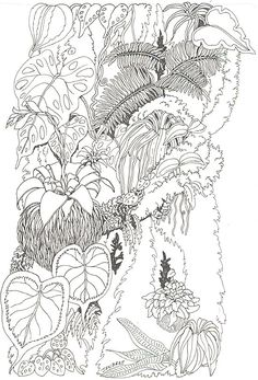 Tree Trunk Coloring Page Luxury Umbrella Coloring Mural Tree Trunk Reverse Pj Masks Coloring Pages, Tree Coloring Page, Coloring Pages To Print, Coloring Book Pages, Printable Coloring Pages, Coloring Pages For Kids, Jungle Coloring Pages, Secret Garden Colouring, Famous Art