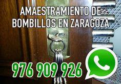 Amaestramiento de bombillos en Zaragoza