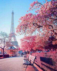 Eiffel Tower Photography, Paris Photography, Nature Photography, Travel Photography, Photography Flowers, Photography Ideas, Wedding Photography, Paris Images, Paris Pictures