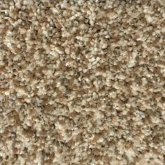 Resurgence I is a pet-friendly residential trackless carpet made from EColor solution with buff color styles and features a Lifetime Pet Stain Resistance Warranty.