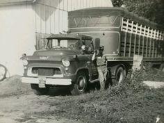 Farm Trucks, Cool Trucks, Big Trucks, 1956 Chevy Truck, Chevy Trucks, Vintage Trucks, Vintage Auto, Livestock Trailers, Military Art