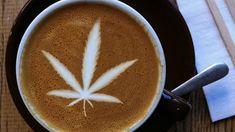 Top 5 CBD Products Hitting Shelves Now Buy Cannabis Seeds, Cannabis Plant, Weed Seeds, Cannabis News, Coffee Art, Coffee Shop, Coffee Company, Coffee Mugs, Mugs