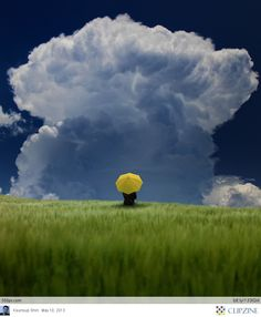 yellow umbrella in approaching storm Yellow Umbrella, Umbrella Art, Parasols, Under My Umbrella, Storm Clouds, Jolie Photo, Salvador Dali, Mellow Yellow, Colour Yellow