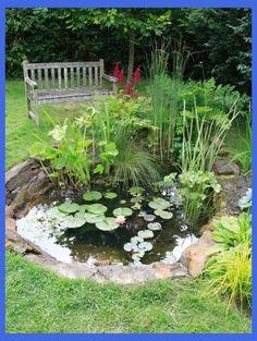 Water Garden Design Water garden, Ponds backyard, Ponds for small gardens Ponds For Small Gardens, Small Ponds, Pond Landscaping, Ponds Backyard, Tropical Landscaping, Landscaping Design, Backyard Waterfalls, Backyard Ideas, Garden Pond Design