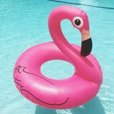 Bouée Flamant rose gonflable géante Tropical Pool, Tropical Party, Flamingo Float, Flamingo Beach, Cool Pool Floats, Cool Pools, Pink Flamingos, Flaman Rose, Beach Party