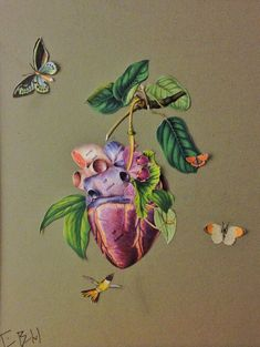 ripened heart - surreal heart and hummingbird anatomical collage by bedelgeuse