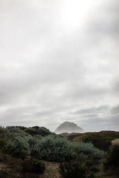 A mini guide on our week long road trip exploring Cambria, San Fransisco, Monterey, Cayucos, Morro Bay, Venice, California.