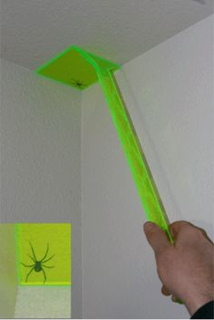 Spider Fighter Hand Tool Killing Spider In The Ceiling Corner!