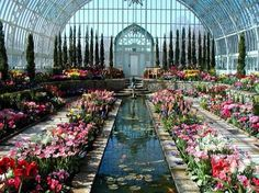 The Como Park conservatory is a beautiful glass building with a Bonsai room, a fern room, and enchanted garden, the north garden, the orchid house, the palm dome, and the always spectacular sunken gar