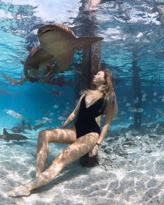 Breathtaking Underwater Photography By André Musgrove is part of Underwater photography - Breathtaking underwater shots by André Musgrove, a multitalented photographer, filmmaker, freediver, and scuba diving instructor from the little island of… Underwater Photography, Photography Tips, Street Photography, Landscape Photography, Portrait Photography, Nature Photography, Fashion Photography, Wedding Photography, Charles Trenet