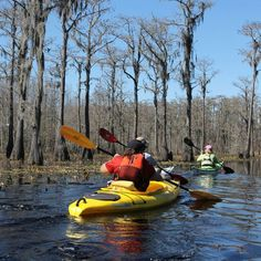 """Though I would be hard-pressed to select my """"favorite"""" paddle spot, I keep coming back to the 7.8 mile round-trip Lafayette Passage Paddling Trail."""