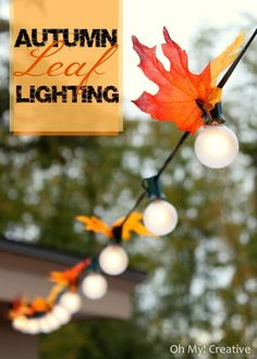 autumn leaf lighting! Great DIY IDEAS  #diy #howto #doityourself #psilovethat #livingwikii #halloween #christmas #seasonal #diyrefashion #ideas #tricks #xoxodiy #home #tips #crafts #holidays