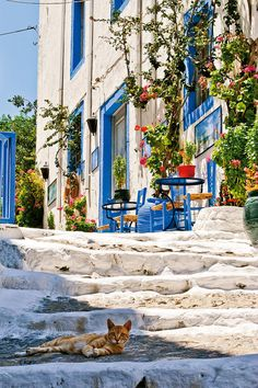 Kos #Kos #Greece