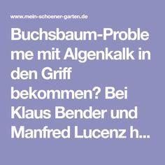 Buchsbaum-Probleme mit Algenkalk in den Griff bekommen? Bei Klaus Bender und Manfred Lucenz hat es funktioniert. Mit ihrem Erfahrungsbericht möchten
