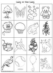 Living and non living things worksheets science for Living and nonliving things coloring pages