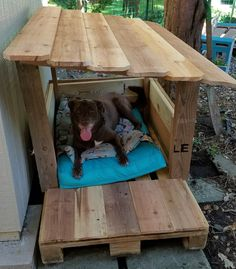 I made this cute dog shelter from an EPAL, scrap wood, and some cedar pickets. Pallet Dog House, Pallet Dog Beds, Dog House Plans, Crate Bench, Dog Crate, Canis, Cool Dog Houses, Outside Dog Houses, Dog Yard