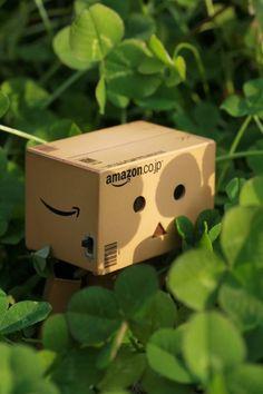 ダンボー Amazon Box, Danbo