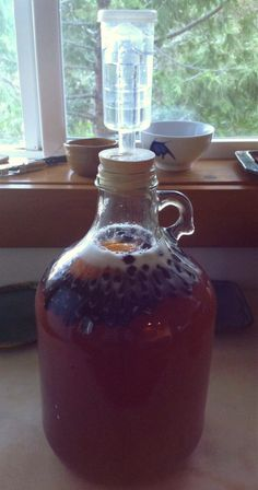 Want to make mead, but intimidated by making a large batch? I'll show you how to make a gallon of mead! This simple mead recipe is perfect for beginners! Homemade Alcohol, Homemade Liquor, Homemade Wine Recipes, Fermented Honey, Fermented Foods, Blueberry Wine, Mead Wine, Champagne Yeast, Recipes