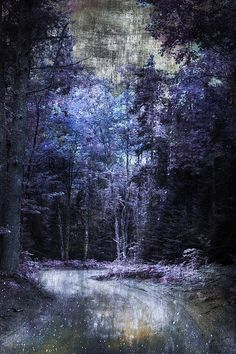 http://fineartamerica.com/featured/enchanted-path-evie-carrier.html