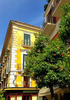 Encore! Life | ♕ |  Sorrento - Mediterranean summer  | by © Ron Gunzburger