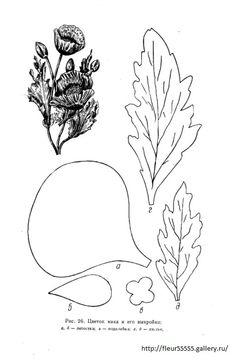 Gallery.ru / Фото #23 - 91 - Fleur55555 Nylon Flowers, Felt Flowers, Diy Flowers, Fabric Flowers, Paper Flowers, Poppy Template, Leaf Template, Flower Template, Sailor Moon Crafts
