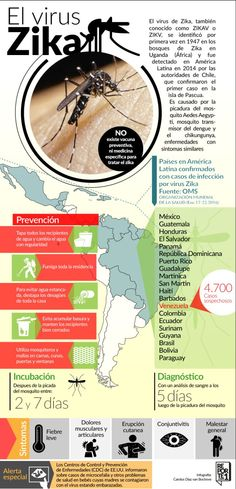 El virus Zika. Infografía
