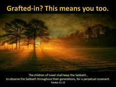 The children of Israel shall keep the Sabbath, to observe the Sabbath throughout their generations, for a perpetual covenant.   Exodus 31:16.