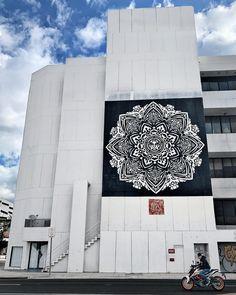SHEPARD FAIREY in Wynwood Arts District, Miami, Florida, USA, 2020 Shepard Fairy, Miami Florida, Skyscraper, Multi Story Building, Art, Art Background, Skyscrapers, Kunst, Performing Arts