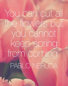 Pablo Neruda you can cut all the flowers, quot