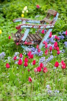 Le reve de printemps