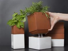 Self Watering Planters from Cult Kitchen Farming, The Grommet Self-watering containers make it easy to grow your own herbs and sprouts right in your kitchen. Self Watering Containers, Self Watering Planter, Concrete Crafts, Concrete Planters, Evergreen Herbs, Diy Plante, Decoracion Low Cost, Make It Easy, Growing Herbs Indoors