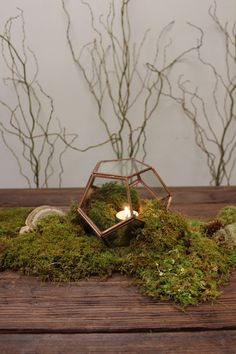 """Greenery Wedding Themes- Super easy woodsy centerpiece (or table runner!) using Sheet Moss, Curly Willow Branches, some assorted forest """"accessories"""" and a terrarium! Moss Centerpieces, Terrarium Centerpiece, Wedding Table Centerpieces, Wedding Decorations, Moss Wedding Decor, Centerpiece Ideas, Moss Decor, Wedding Themes, Curly Willow Centerpieces"""