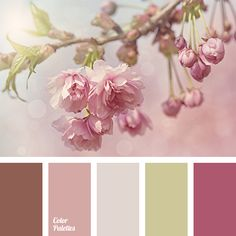 Cherry blossom will fit organically into a bedroom, if the basis is pastel pink and the details are olive green and chocolate brown.