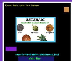 Plantas Medicinales Para Diabetes 185903 - Aprenda como vencer la diabetes y recuperar su salud.