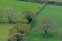Fossil Fuel Fertilizers v. Compost Teas on the Farm