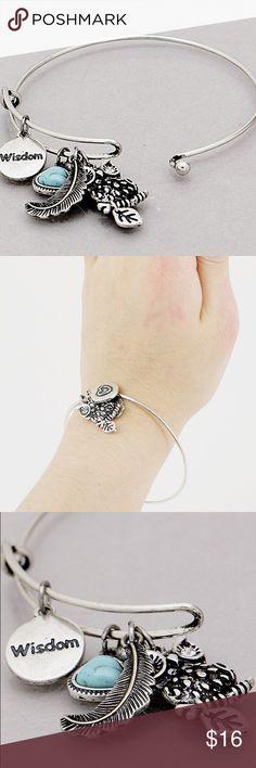 Oxidized silver antique owl feather bracelet New! 2.5 inch diameter oxidized silver tone hook bracelet. Bundle and save 15%. No trades. Jewelry Bracelets