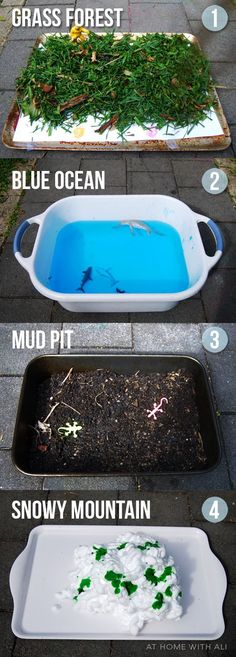 4 sensory play stations, each with a different ecosystem. Which means different animals and you could even bring up diversity during this time of play. To learn that everything comes from another place and how it does not matter where you are from, we`re all the same.