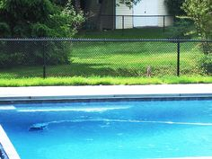 Residential Chain Link Pool Fencing Chain Link Fence, Pool Fence, Environment, Patio, Fencing, Pools, Outdoor Decor, Garden, Swiming Pool