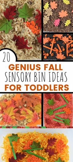 Fall Sensory Play Ideas For Toddlers! We put together over 20 easy fall sensory bin ideas for your toddlers and preschoolers. Fall Sensory Bins for 2 year-olds!! Fall Sensory Activities, Fall Activities For Toddlers, Fall Activities For Preschoolers, Activities For Kids. #toddlers #Fallactivities #toddleractivities Fall Sensory Bin, Sensory Bins, Sensory Play, Sensory Activities For Preschoolers, Autumn Activities, Toddler Activities, Toddler Snacks, Toddler Preschool, Play Ideas