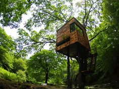 The Zen of treehouses: Japan's treehouse master Takashi Kobayashi