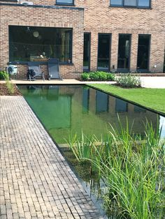 Small Backyard Pools, Small Pools, Ponds Backyard, Outdoor Pool, Hotel Swimming Pool, Swiming Pool, Natural Swimming Ponds, Outside Pool, Water Features In The Garden
