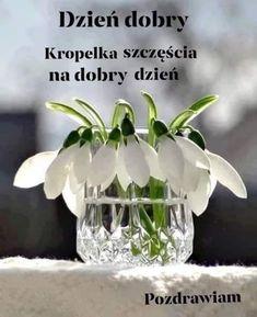 Snowdrops in crystal Cut Flowers, White Flowers, Beautiful Flowers, Ikebana, White Flower Farm, White Gardens, Forever, Spring Green, My Flower