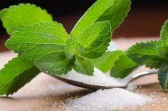 ''ZAHĂRUL VERDE'': dulcele natural cu zero calorii, care nu modifică gustul alimentelor și aduce beneficii însemnate