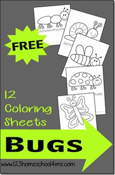 FREE Bug Coloring Sheets FREE Simple Bug Coloring Pages for Toddler, Preschool, prek, kindergarten, first grade students. These coloring sheets are perfect for spring and to improve fine motor skills. Preschool Lessons, Preschool Crafts, Crafts For Kids, Toddler Preschool, Preschool Bug Theme, Preschool Classroom, Insect Crafts, Bug Crafts, Bug Coloring Pages
