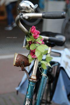 48 Stunden in Amsterdam {Meine Tipps} | Dreierlei Liebelei | Bloglovin'