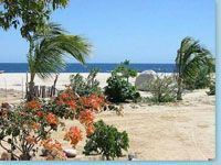 Playa Norte RV park, East Cape, Baja, Mexico