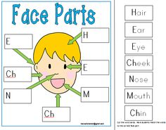 "Labeling Face Body Parts- Center Mat- This teaching tool is a part of my ""MY BODY' teaching unit for Kindergarten.  Click on the link to see more Enjoy Marcelle"