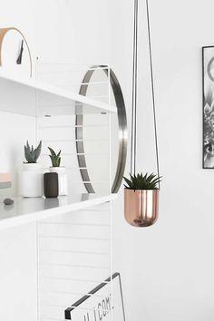 Top 9 Indoor Plant Ideas l Stylish Indoor Plants l Image via Beeld Steil [ ReceptionCounterSolutions.com ]
