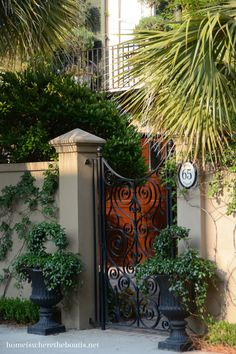 We find ourselves returning to Charleston, SC for a weekend visit a couple of times a year. No matter how many times I visit, I always enjoy taking a stroll in the early morning hours with my camer… Historic Charleston Sc, Charleston Gardens, Charleston South Carolina, Charleston Homes, Charleston Style, Antebellum Homes, Wrought Iron Gates, Garden Gates, Garden Doors